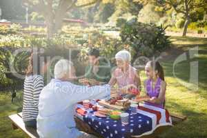 Family having meal in the park