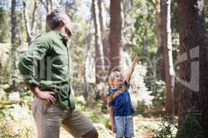 Little boy showing something to father in forest