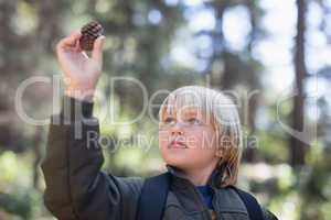 Little boy looking at pine cone in forest