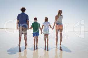 Rear view of family holding hands while standing on shore