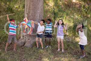 Group of friends cheering for blindfolded boy hitting pinata hanging on tree