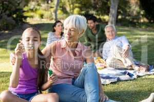 Grand mother looking at her granddaughter blowing bubbles in the park