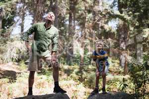 Curious father and son looking up while standing on rocks in forest