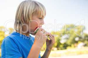 Boy having watermelon in the park