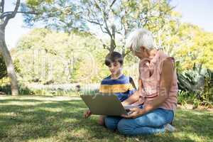 Grandmother and grandson using laptop in the park
