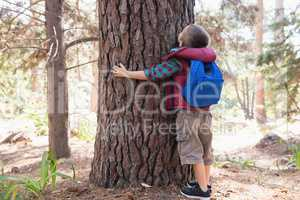 Rear view of boy embracing tree in forest