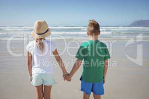 Rear view of siblings holding hands on shore at beach