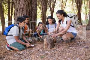 Teacher and children examing tree stump in forest