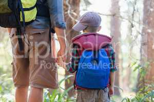 Rear view of boy holding hands with father in forest