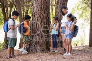 Students examining tree trunk with teacher in forest