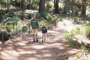 Father and son hiking on sunny day in forest