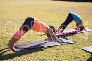 Girl practicing downward facing dog positiong with trainer