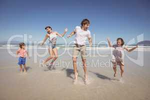 Cheerful family jumping on shore at beach