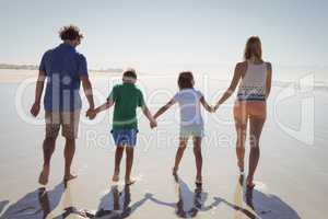 Rear view of family holding hands while walking together on shore