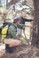 Father showing plant bark to son in forest