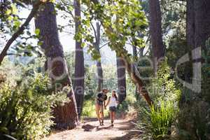 Hikers holding hands on trail in forest