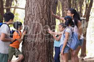 Teacher and children touching tree trunk in forest