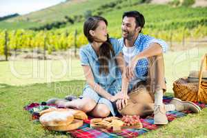 Cheerful couple sitting on picnic blanket