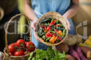 Woman holding bell peppers in wicker basket at farm