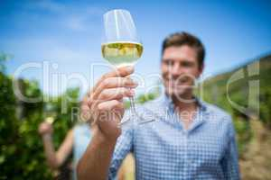 Young man holding wineglass at vineyard