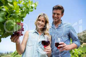 Low angle view of smiling couple holding winnglasses at vineyard
