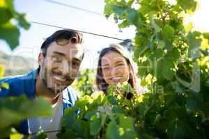 Portrait of smiling couple looking through plants