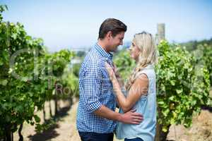Side view of young couple looking at each other in vineyard