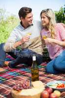Happy young couple holding wineglasses on picnic blanket