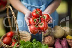 Woman holding tomatoes on palm