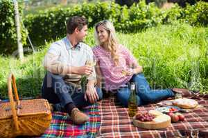 Happy couple holding wineglasses on picnic blanket