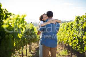Couple hugging amidst plants at vineyard