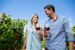 Low angle view of couple holding winnglasses at vineyard