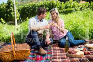 Happy couple toasting wineglasses on picnic blanket