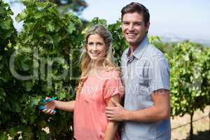 Portrait of happy couple using pruning shears at vineyard