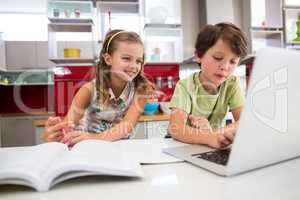 Siblings using laptop while doing homework in kitchen