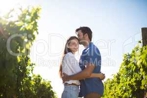 Smiling woman hugging boyfriend amidst plants at vineyard