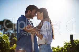 Young couple face to face standing at vineyard against sky during sunny day
