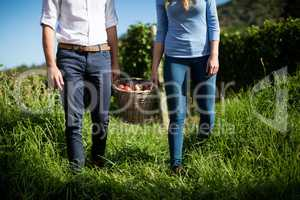 Mid section of couple carrying fruits in wicker basket at farm