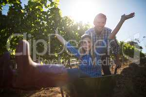 Portrait of happy man pushing his cheerful girlfriend in wheelbarrow at vineyard