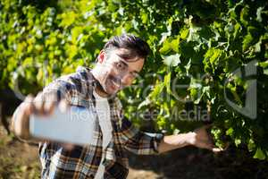 Happy man taking selfie with grapes growing on plants