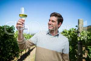 Happy young man holding wineglass at vineyard