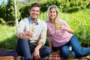 Portrait of happy couple holding wineglasses on picnic blanket