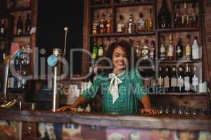 Portrait of beautiful female bar tender