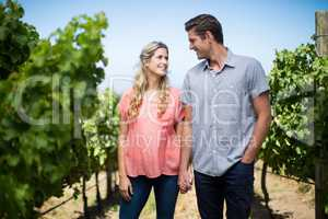 Happy young couple holding hands at vineyard