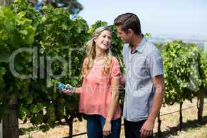 Cheerful couple using pruning shears at vineyard