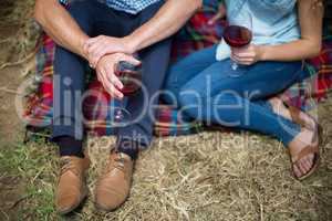 Couple holding wineglasses while sitting on picnic blanket