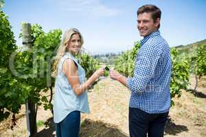 Portrait of smiling couple toasting wineglasses