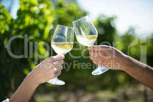 Couple toasting wineglasses at vineyard on sunny day