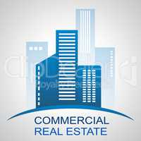 Commercial Real Estate Meaning Offices Buildings 3d Illustration