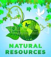 Natural Resources Design Shows Nature Assets 3d Illustration